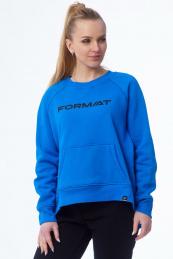 FORMAT 13064.1