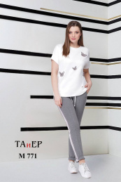 TAiER 771