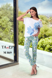 TAiER 869-1